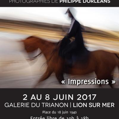 Galerie du Trianon – Lion sur Mer
