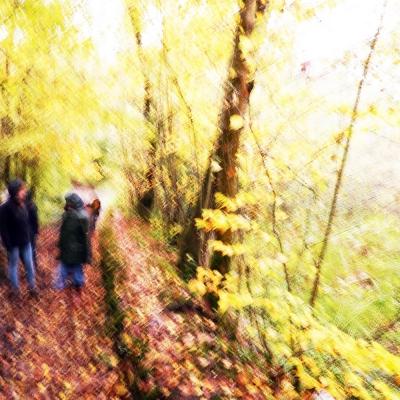 Rêve d'automne (2) Troisième choix internautes