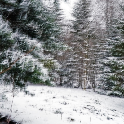 Rêve de neige (1)