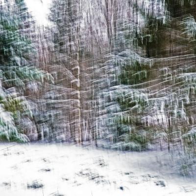 Rêve de neige (2) Premier choix internautes