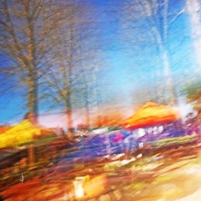 Foire aux arbres Lisieux 2021 (3)